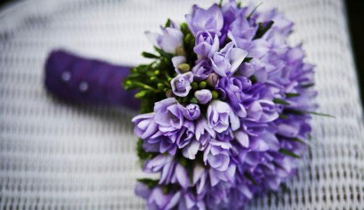 山里亮太と蒼井優の実家と結婚式はどこ?馴れ初めやデキ婚の可能性は?
